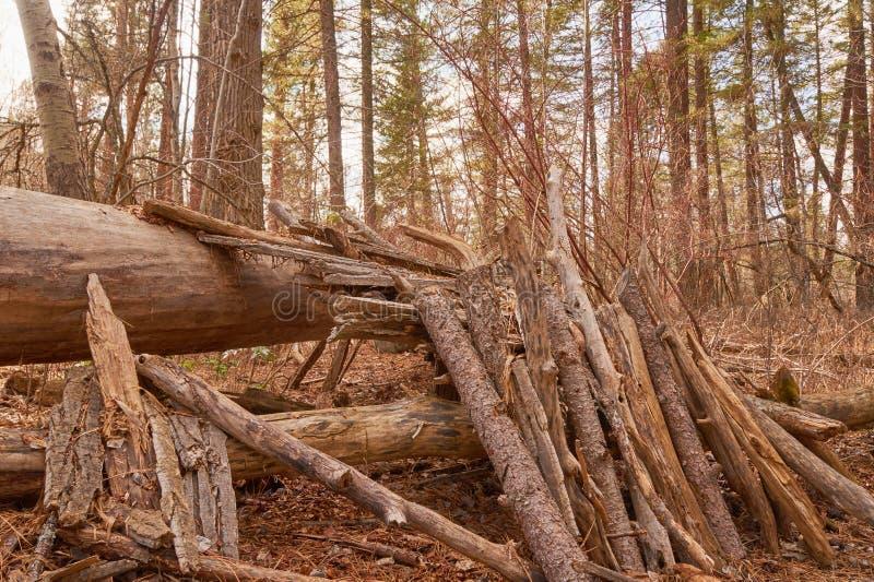 Forteresse en bois image stock