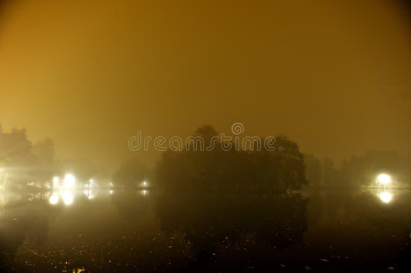 Fortfarande lakereflexion med trees på natten royaltyfri bild