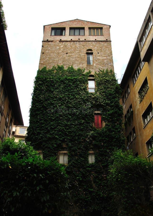 Fortificação de pedra de Florença da torre, Toscânia, Itali imagens de stock royalty free