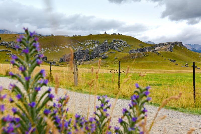 Fortifichi la collina, famosa per le sue formazioni rocciose giganti del calcare in Nuova Zelanda fotografie stock
