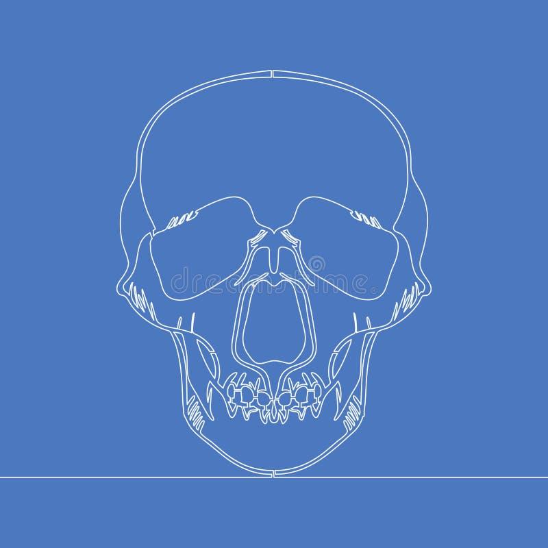 Fortlöpande en linje mänskligt skallevektorbegrepp vektor illustrationer