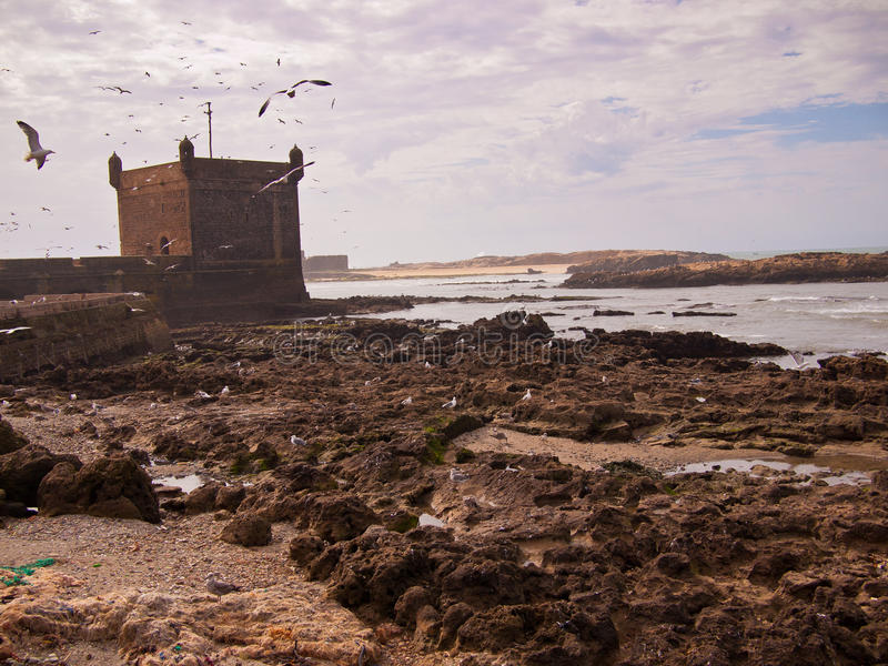 The fortress stands on the beach royalty free stock images