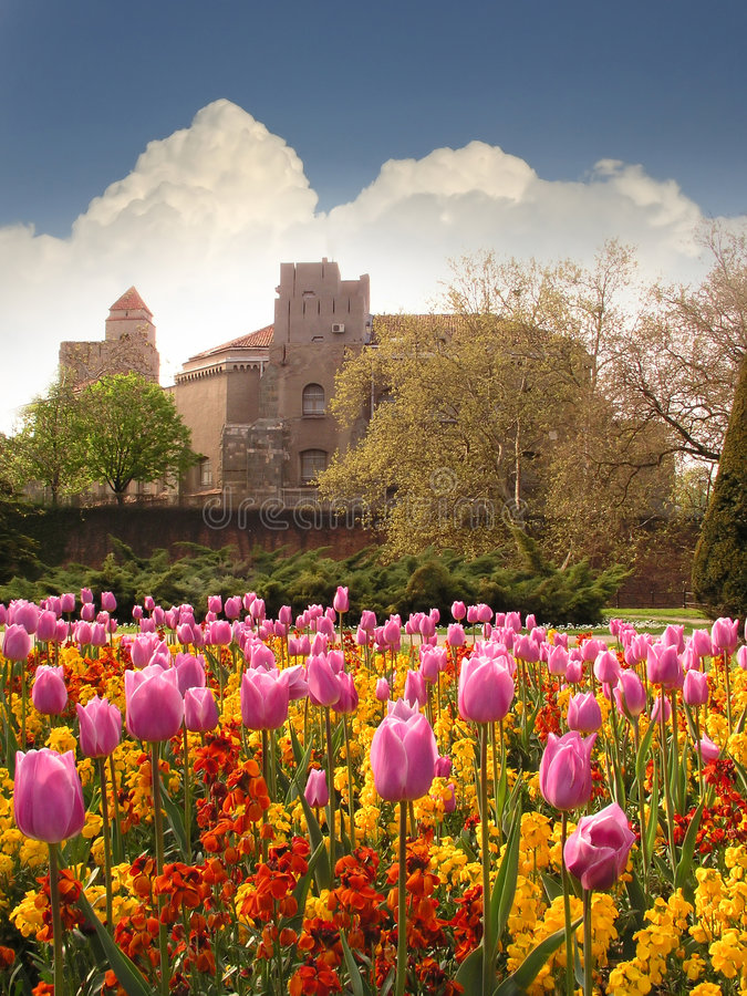 Download Fortress and Tulips stock image. Image of medieval, europe - 2210959