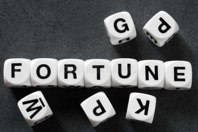Fortuna de la palabra en los cubos del juguete fotografía de archivo libre de regalías
