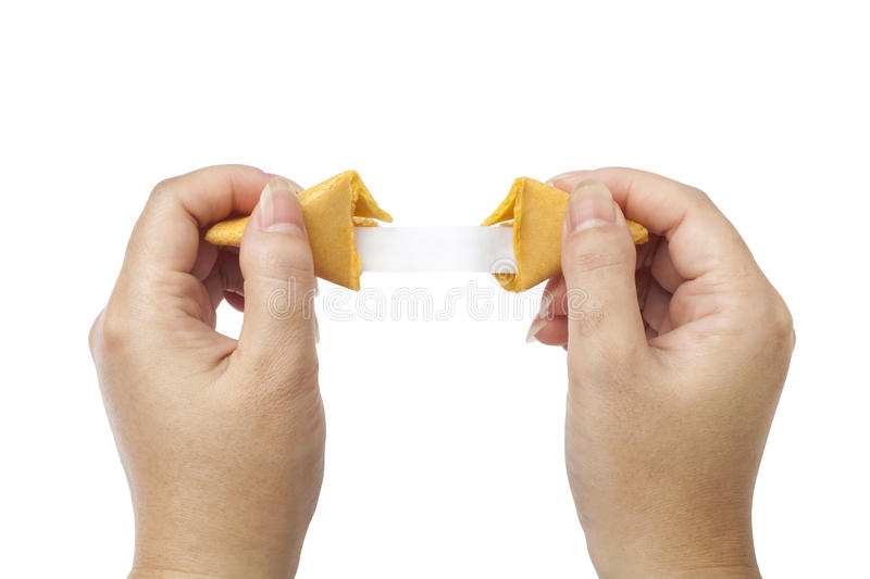fortune cookie held open to blank fortune stock photo