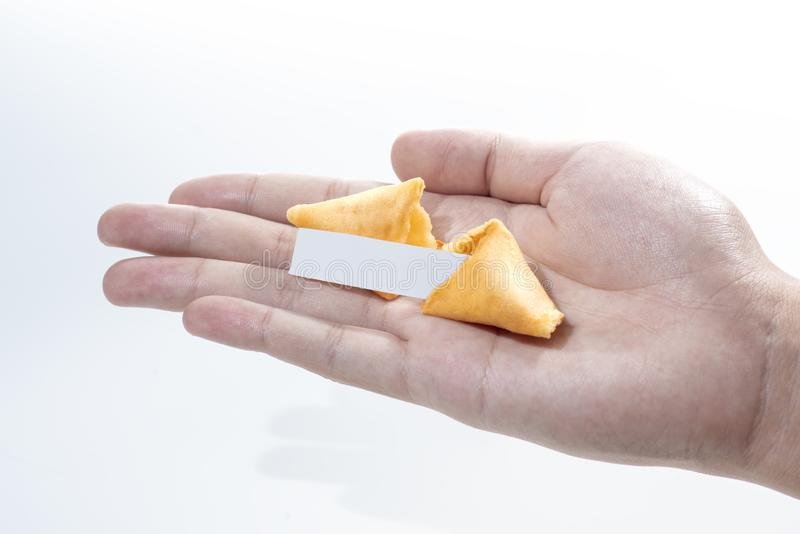 Fortune cookies with empty quote on human hand royalty free stock image