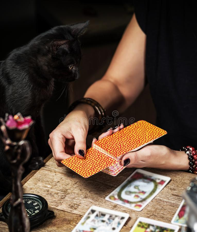 A fortune teller with a black cat read the Tarot cards. royalty free stock photo