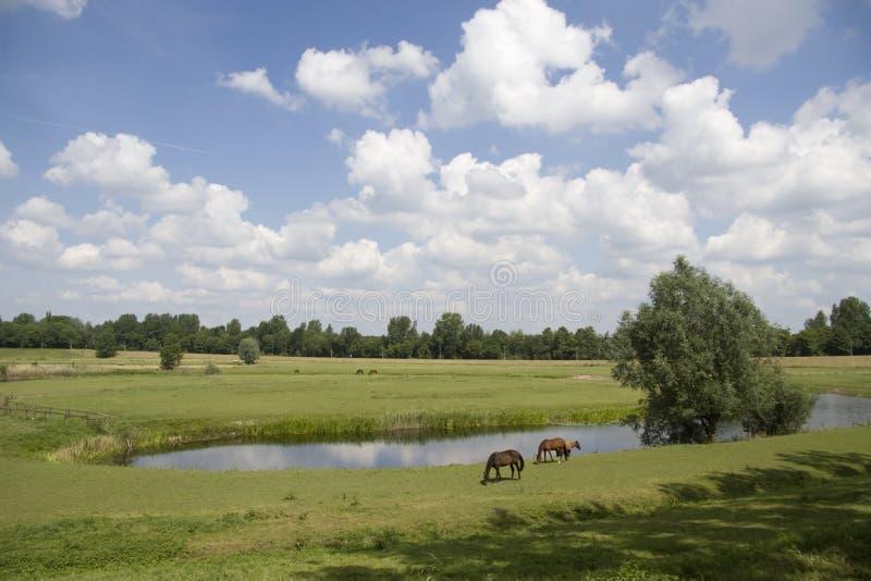 Fosa fort Elden Westerveld fotografia stock