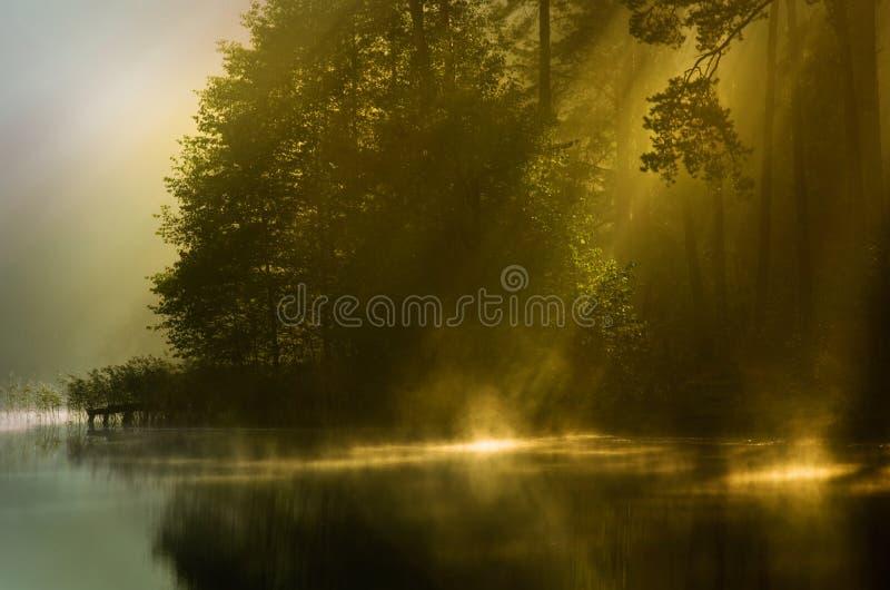 Foschia di autunno del primo mattino immagine stock