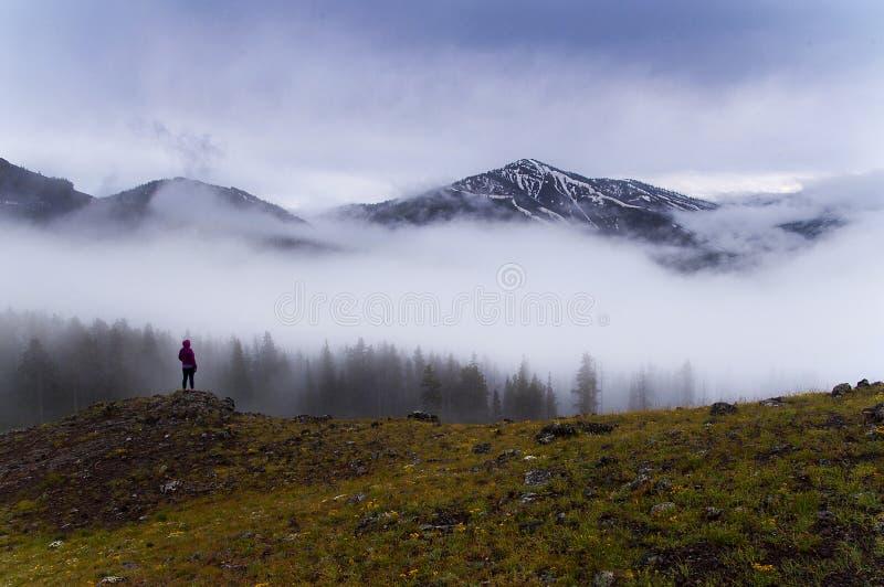 Foschia di mattina in montagne di Yellowstone fotografia stock libera da diritti