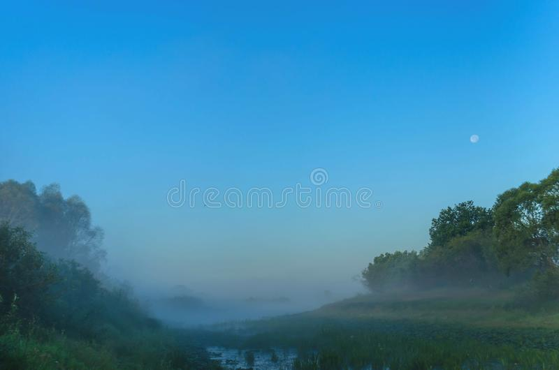 Foschia incredibile sopra il fiume all'alba Notte sui precedenti della luna e della fauna selvatica immagini stock libere da diritti