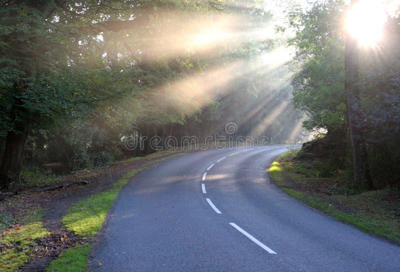 Foschia rurale della strada di alba di luce solare fotografie stock libere da diritti