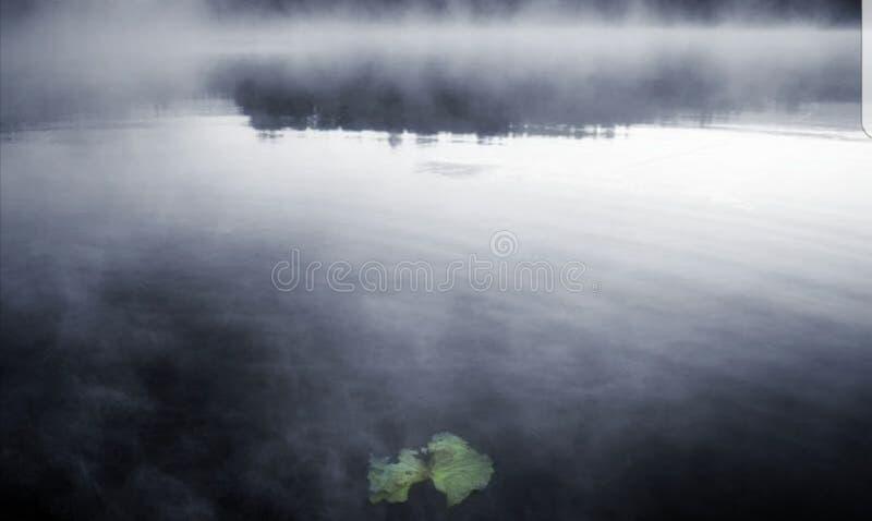 Foschia su un lago fotografia stock libera da diritti