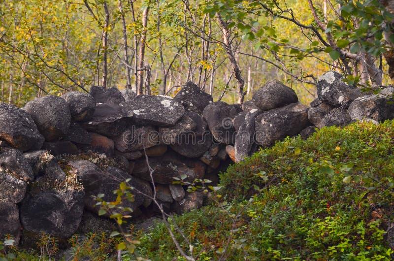 Foso viejo por una ruta que emigra en un bosque nórdico del pino imagen de archivo libre de regalías