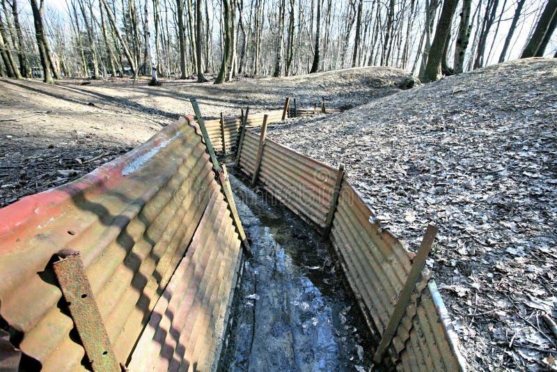 Foso WW1 en la madera del santuario foto de archivo