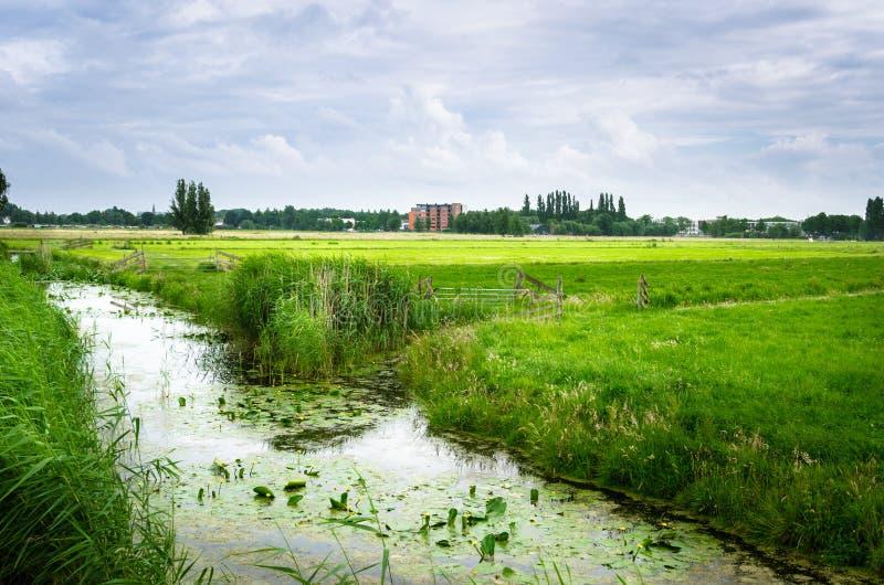 Fossé le long d'un champ dans la campagne des Pays-Bas photographie stock
