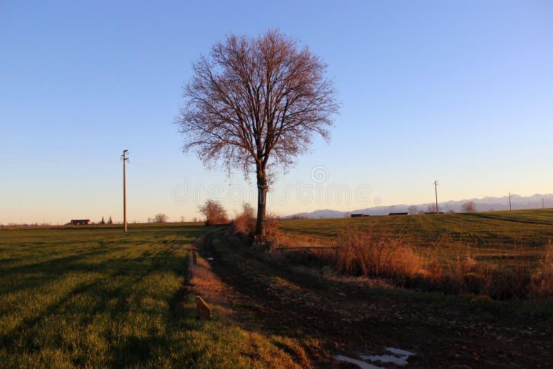 Fossano το φθινόπωρο στοκ εικόνα με δικαίωμα ελεύθερης χρήσης