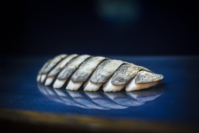 Fossiel van een marien weekdier stock fotografie