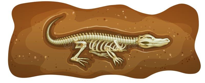 fossil ilustração stock
