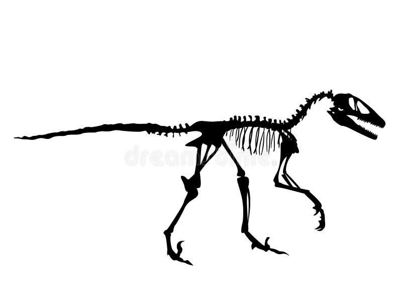 Fossile di Deinonychus illustrazione vettoriale