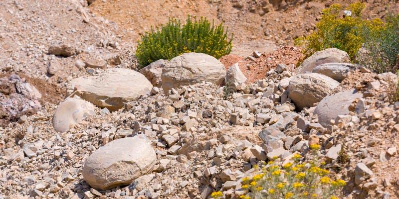 Fossiles dans les Andes de Huancayo, Pérou photographie stock libre de droits