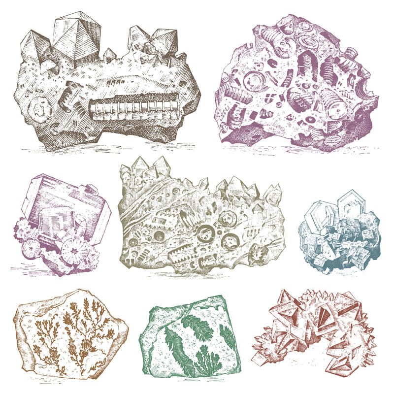 Fossilized plants, stones and minerals, crystals, prehistoric animals, archeology or paleontology. fragment fossils stock illustration