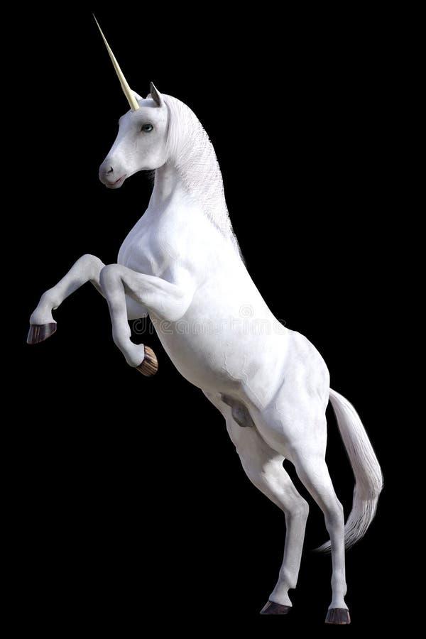 fostra unicorn royaltyfria foton