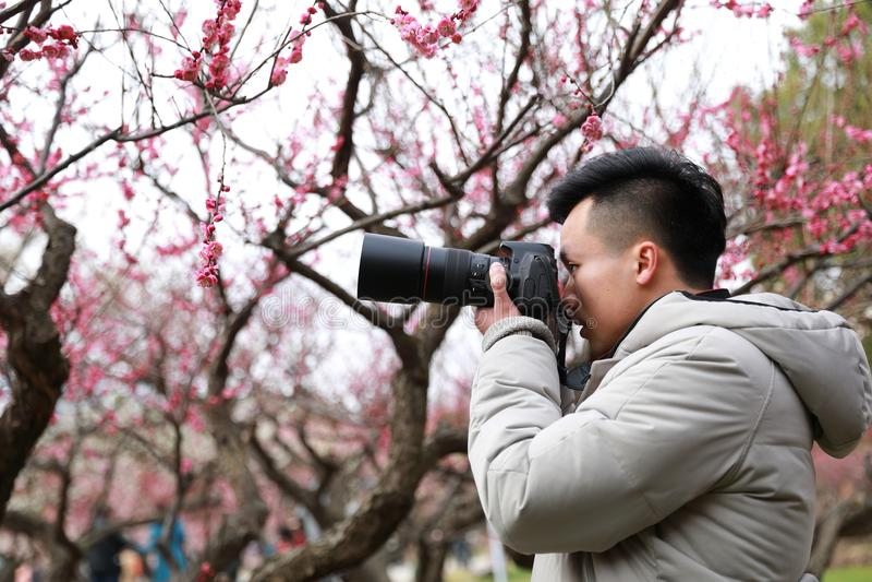 Fotógrafo chinês asiático do homem na natureza imagens de stock royalty free