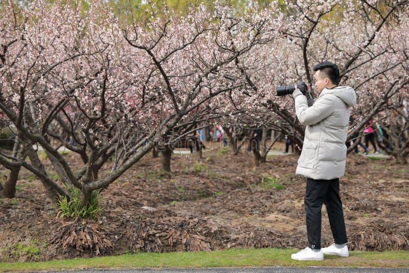 Fotógrafo chinês asiático do homem na natureza imagem de stock royalty free