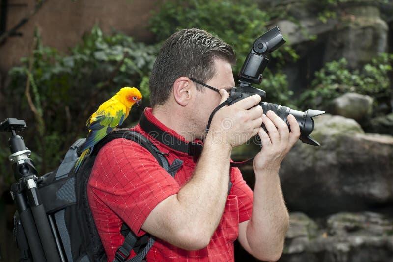 Fotógrafo con el pájaro en el hombro fotos de archivo