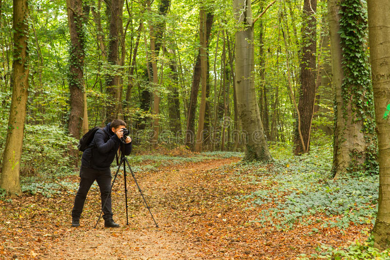Fotógrafo da floresta fotografia de stock