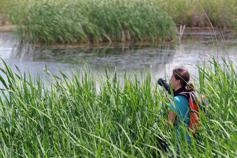 Fotógrafo da jovem mulher no delta fotos de stock