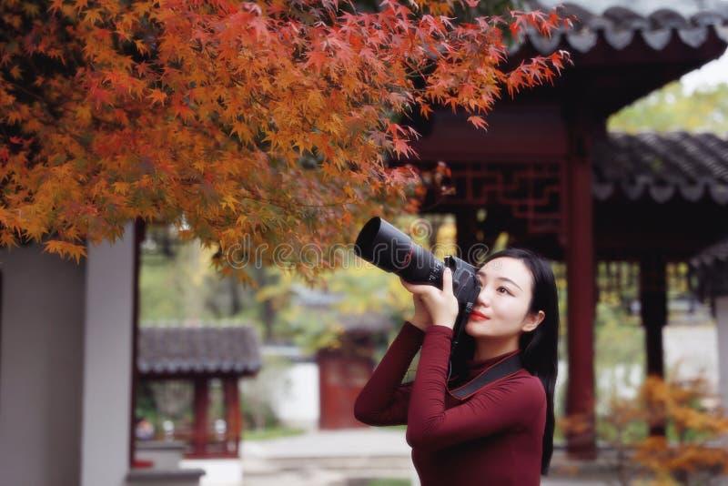 Fotógrafo de la mujer en naturaleza en el parque del otoño fotografía de archivo libre de regalías