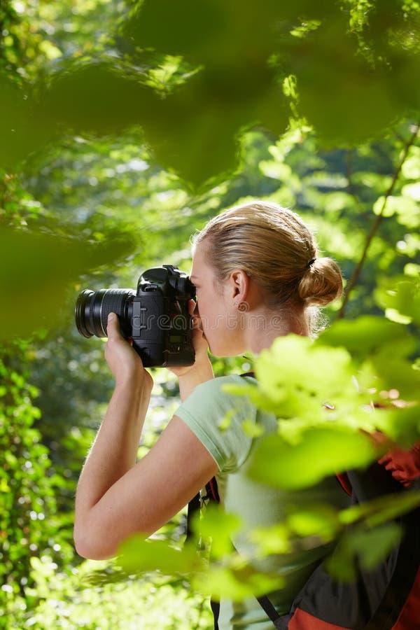 Fotógrafo de sexo femenino joven que va de excursión en bosque imagen de archivo