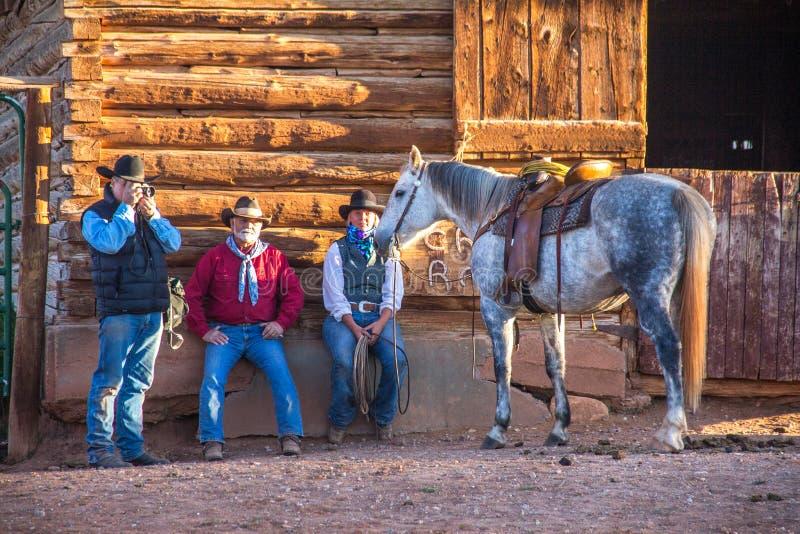 Fotógrafo Photographing Horse imagen de archivo