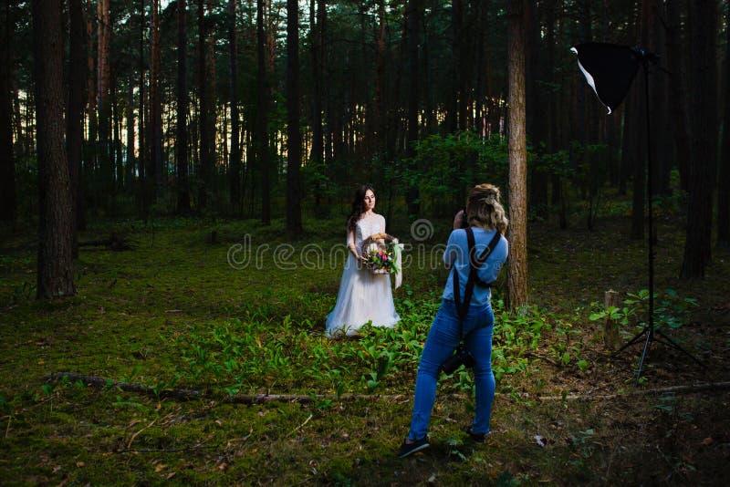 Fotógrafo profesional de la boda que usa el estroboscópico y el softbox para hacer imágenes fotos de archivo libres de regalías