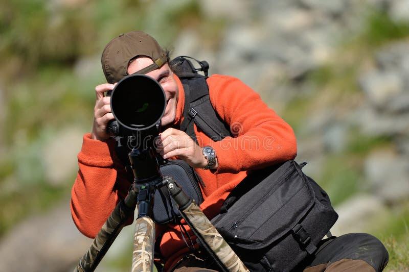 Fotógrafo profissional dos animais selvagens imagem de stock