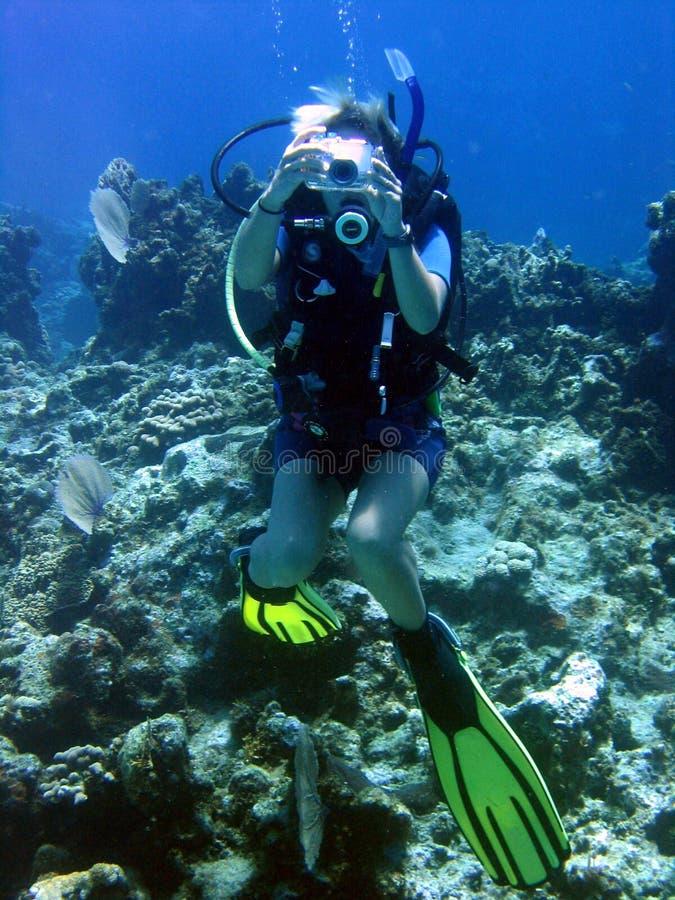 Fotógrafo subaquático fotografia de stock royalty free