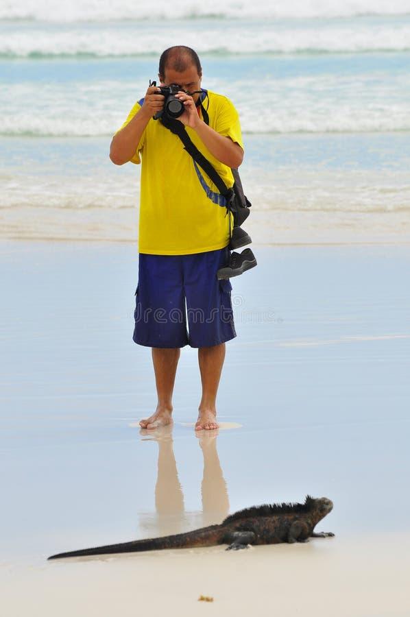 Fotógrafo y iguana fotografía de archivo libre de regalías