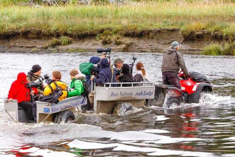 Fotógrafos de Alaska que montan ATV para ir plata Salmon Creek de la visión del oso de Brown foto de archivo