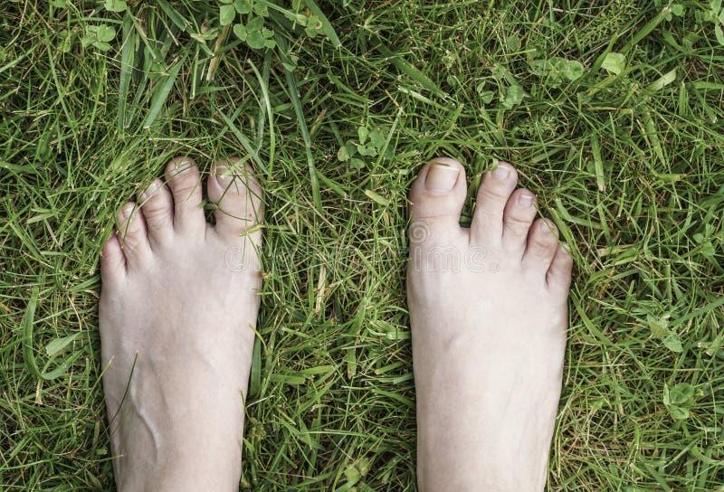 Fot av en kvinna på gräs arkivfoton