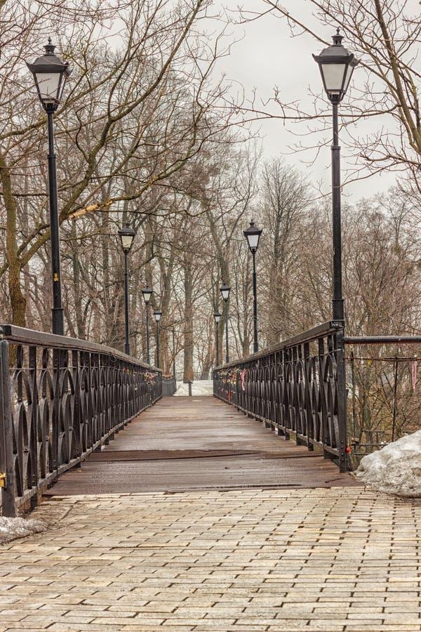 Fot- bro med lyktor som omges av träd, vinter arkivfoton
