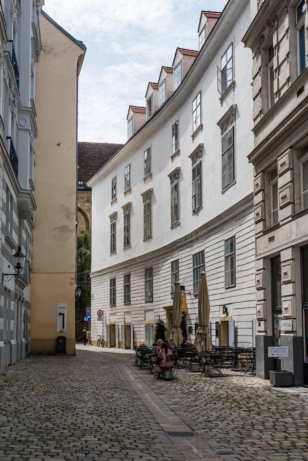 Fot- gata i Wien royaltyfri bild