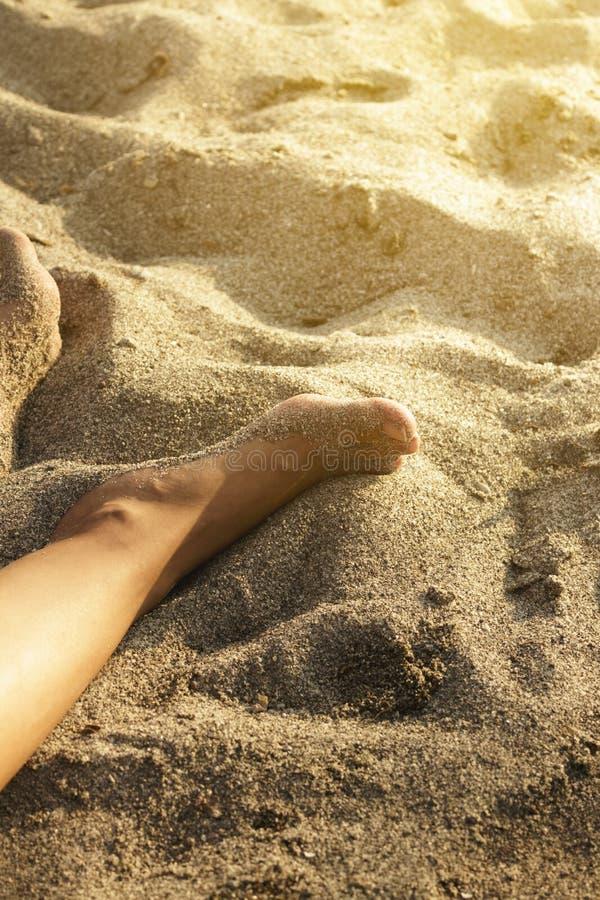 Download Fot på strand arkivfoto. Bild av solnedgång, barfota - 78731172
