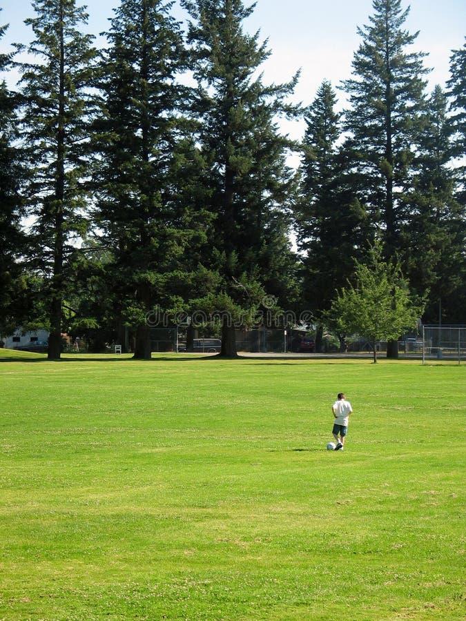 fotboll för fältgrässpelare royaltyfria bilder