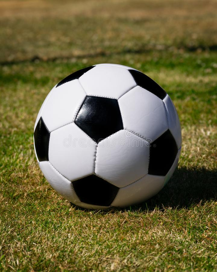 Fotboll för textbok royaltyfri fotografi