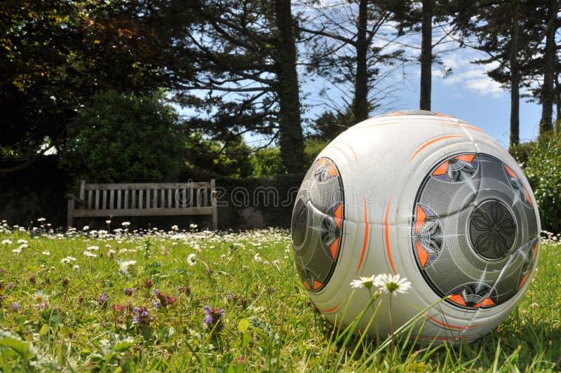 Fotboll i trädgård royaltyfria bilder