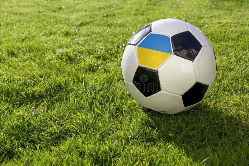 Fotboll med flaggan royaltyfri bild