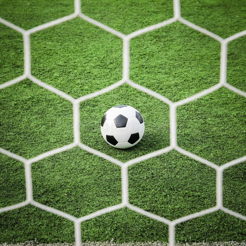 Fotboll på grönt gräs framme av det netto royaltyfri bild
