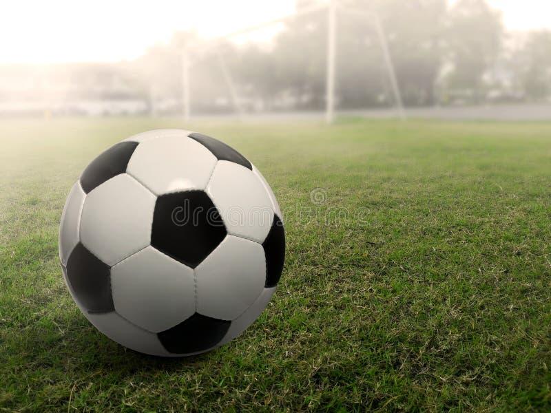 Fotbollboll på ett gräsfotbollfält, under solnedgången royaltyfri fotografi